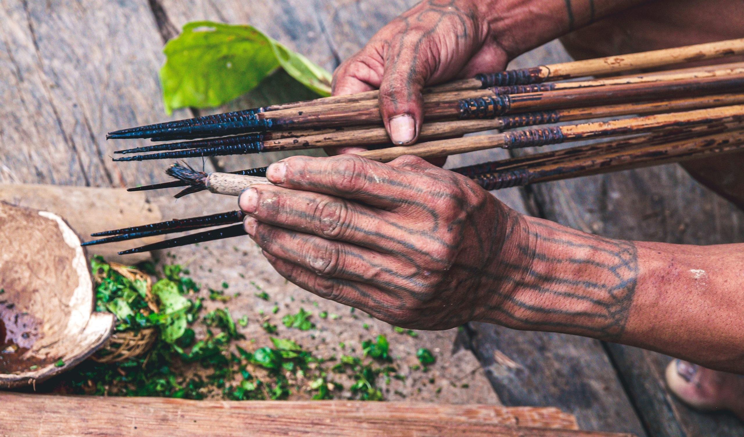 Mentawai bereitet Giftpfeile zu