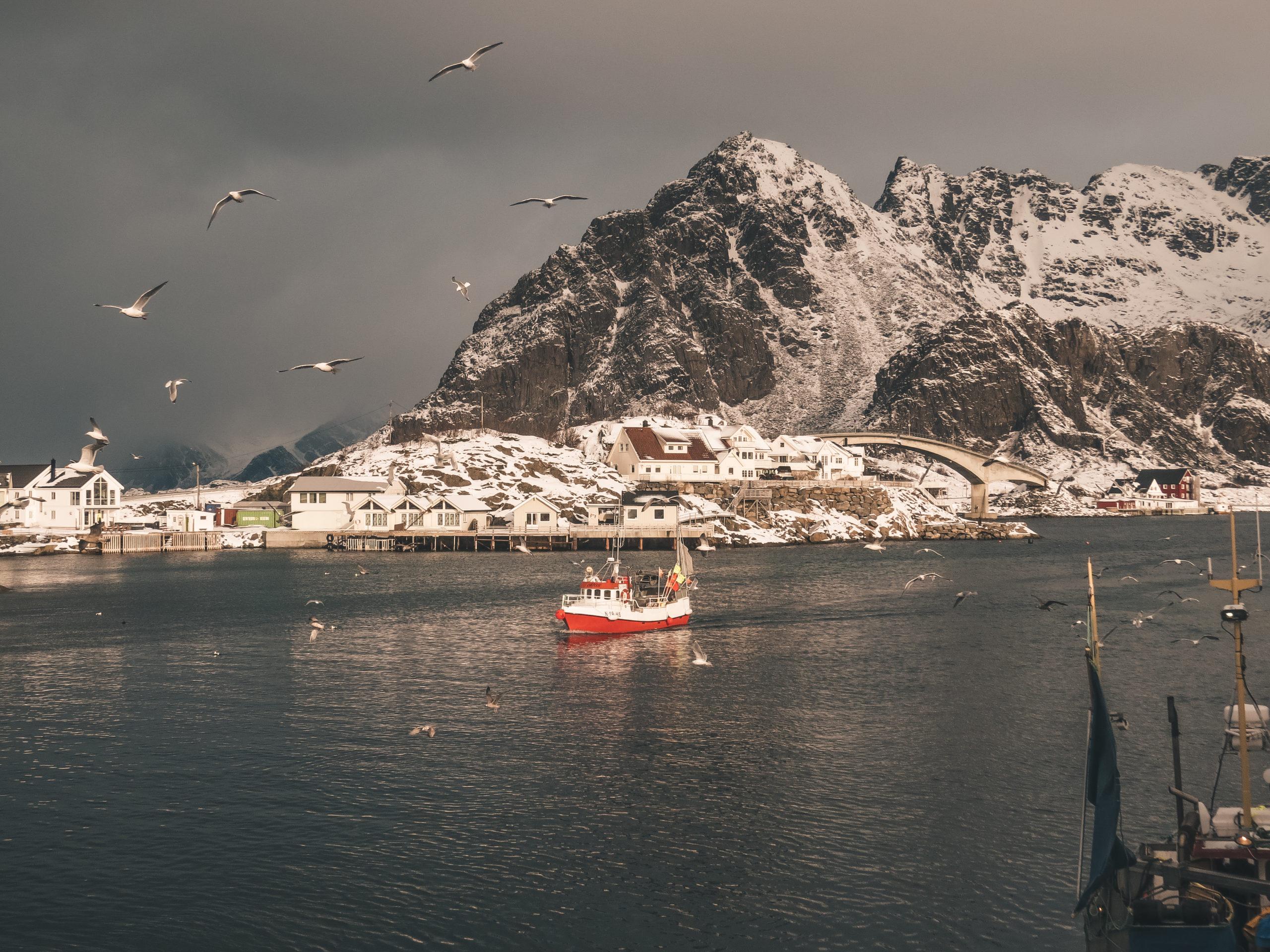Fischerboot im Hafen von Lofoten